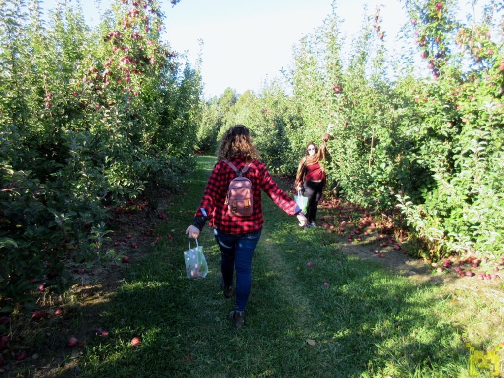 Dori and Lauria stroll through the orchard.
