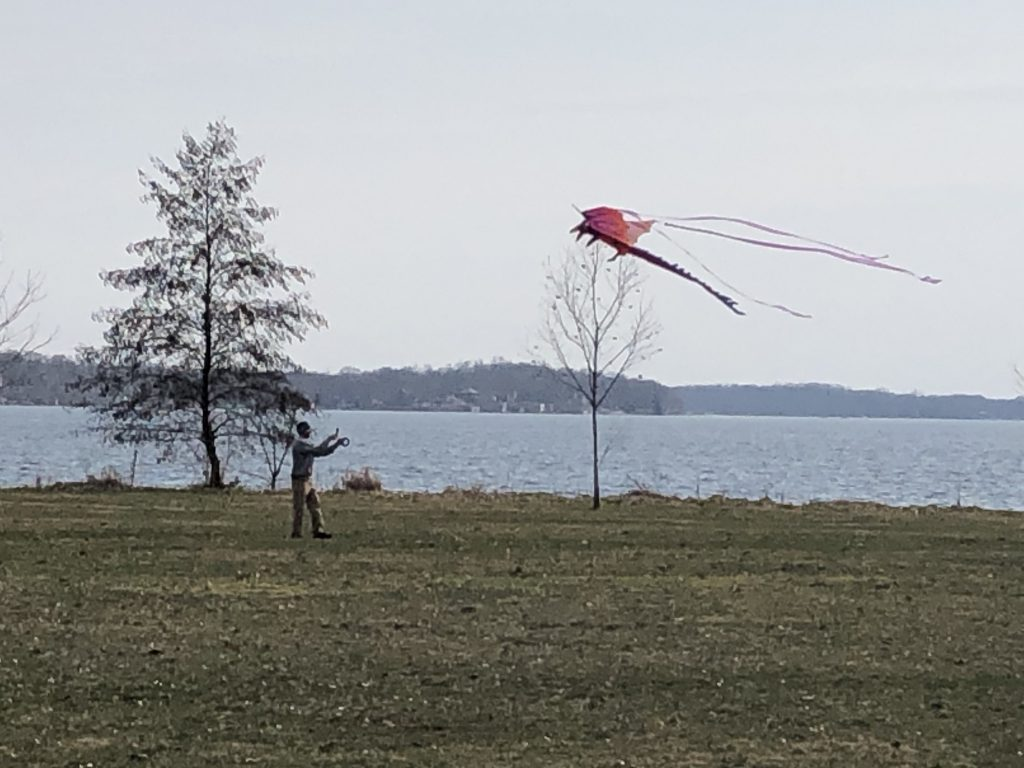 A person flying a kite alongside a lake in Madison, Wisconsin