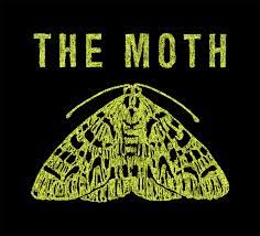 An outline of a green moth against a black background